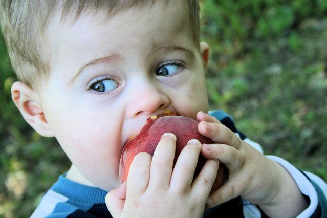 little-boy-eating-a-peach-1-1429637-639x426